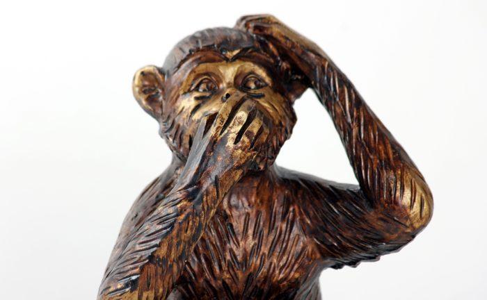 monkey-987886_1920