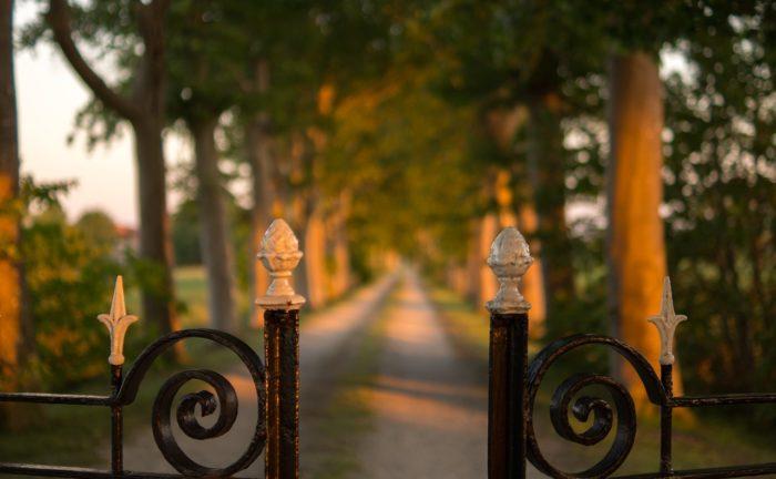 fence-996620_1280
